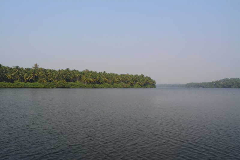 Kozhikode Backwaters